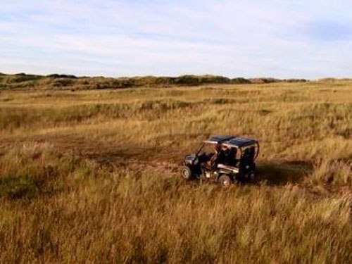 Eco-safari Ameland